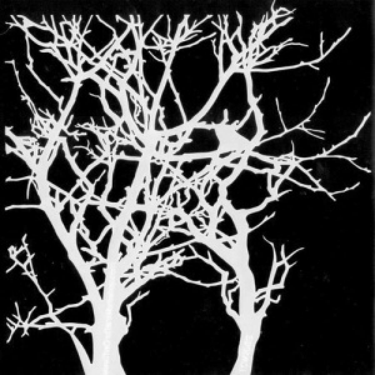 TCW, Stencil, 15x15, Mini Branches - maske
