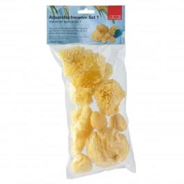 Natur svampe sæt, 6 stk