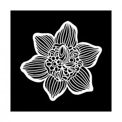 TCW, Stencil, 30x30, Cupped Daffodil