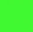219 Neon green fluorescen