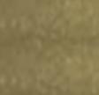 228 Metallic gold