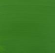 618 Permanent Green Light