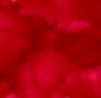 R5 Cherry Pink